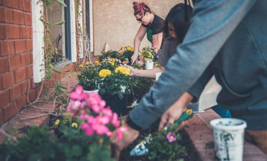 Verkäufer (m/w/d) Gartencenter
